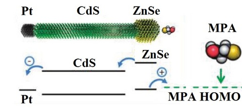 Nanorods are composed of three segments: Pt nanoparticle, CdS single-crustal nanowire and ZnSe nanoparticle. Such nanorods are used for light energy harvesting through photocatalytic hydrogen production.